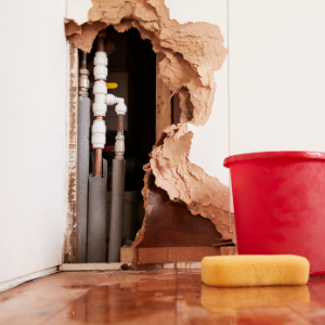 What to Do Before a Plumber Fixes Your Burst Pipe