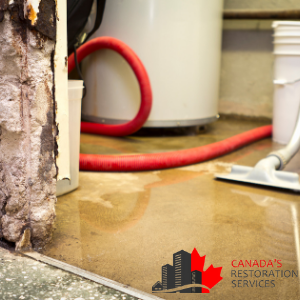 How To Get A Water Damaged Basement Repaired In Toronto