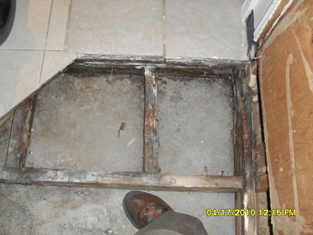 Mold Under Tiles from Water Damage